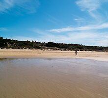 Beach Walker by tkubiena