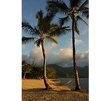 Hammock Between Palms Photographic Print