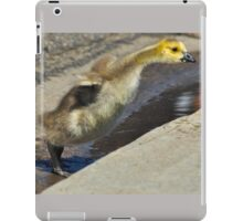 Stretching the Limit iPad Case/Skin