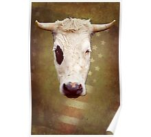 Prime AAA big horn Bull Poster