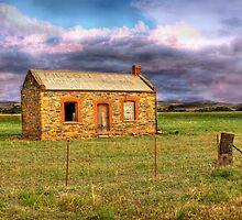 Alone - Sedan, Murraylands, South Australia by Mark Richards