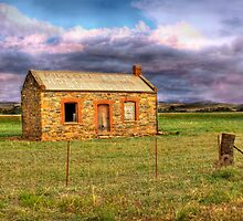 Alone - Sedan, Murraylands, South Australia by Mark Richards