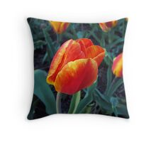 Blowing in the breeze Throw Pillow