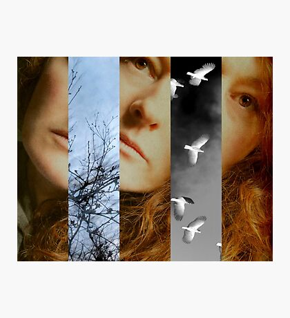 Transient Photographic Print