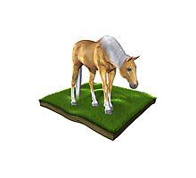 3D Horse Photographic Print