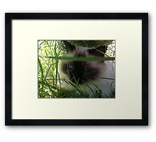 My Piece of Shade, Dammit! Framed Print