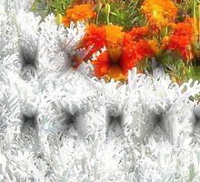 Floral Fantasy by kenspics