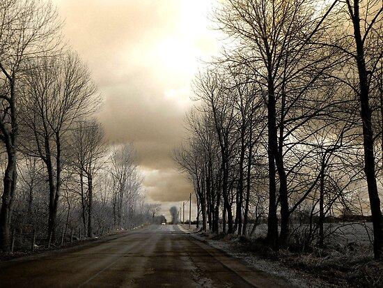 The Road ! by Elfriede Fulda