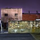 Tapley Street Wall - Adelaide by sedge808