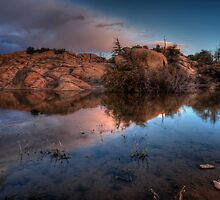 Pond Light by Bob Larson