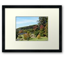 'Sloping lawns and Autumn colour!' Mount Lofty Botanic Gardens, Adelaide. S.A. Framed Print