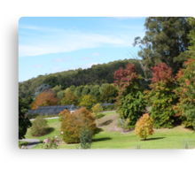 'Sloping lawns and Autumn colour!' Mount Lofty Botanic Gardens, Adelaide. S.A. Canvas Print