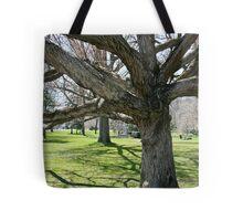 Bent Shadow Tote Bag