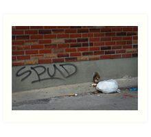 An Opportunist Squirrel Named Spud Art Print