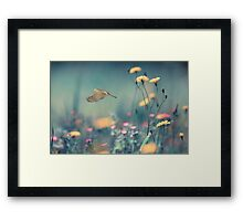 When a Dove Flys Framed Print