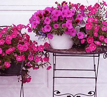 Pretty Petunias by Sandra Foster