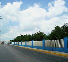 Blue and White Fence by TiffanieH