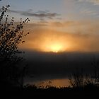 Sunrise through the fog by Kathleen Hamilton