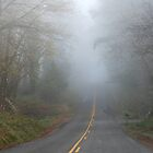 Foggy country road by Rainydayphotos