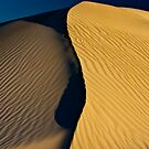 Just another dune scape. by thorpey