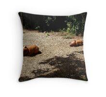 Wombat Sculptures Throw Pillow