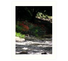 At the Yarra River, Warburton, Victoria Art Print