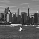 Sydney Cityscape by Ross Campbell