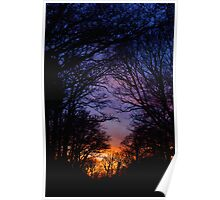 Sunset down south Poster