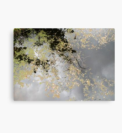 The Up Side of Down #1 Canvas Print