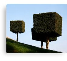 Disney Topiary 'Square Trees' Canvas Print