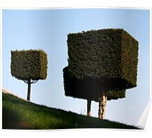 Disney Topiary 'Square Trees' Poster