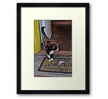 You have to do, what you have to do Framed Print