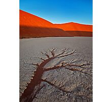 Baked Earth Photographic Print