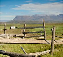 Crazy views of Iceland,  Farm. by Cappelletti Benjamin
