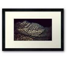 Atlas I Framed Print