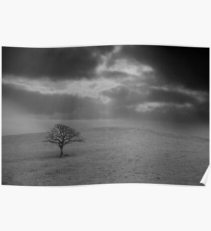 Tree on the hill Poster