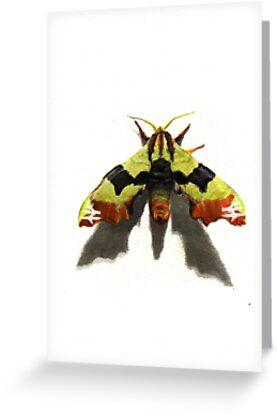 Urban Jungle: Travel Moth by iszi