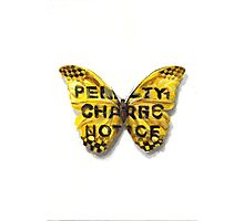 Urban Jungle: Butterfly  Photographic Print