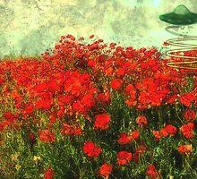 Soporiphic Invasion by Gal Lo Leggio