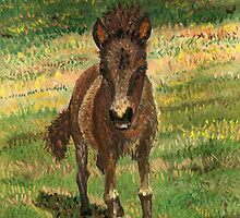 Baby Foal by Kashmere1646