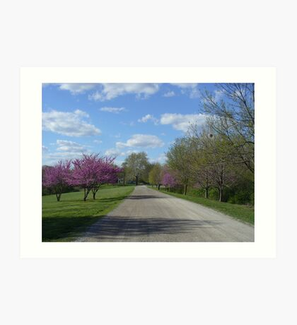 Country Road in the Spring Art Print