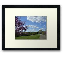 Country Garden Path in Spring Framed Print