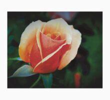 Peach rosebud Kids Clothes