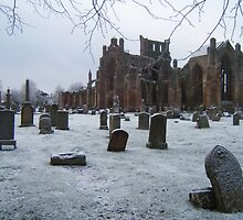 Snowfall at Melrose Abbey, the Scottish Borders  by LBMcNicoll