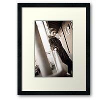 L 6.0 Framed Print