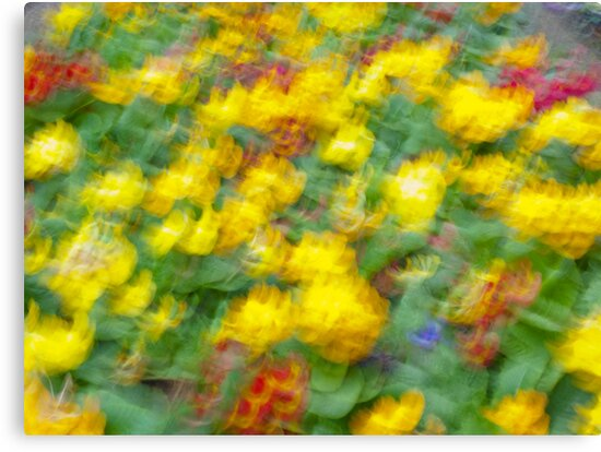 Flowers 3 - Impressionist photography by GrahamCSmith