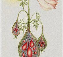 Floribunda Aspidistralasia by Helena Wilsen - Saunders
