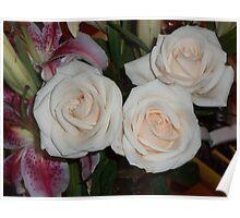 ...yesterday in the House are enjoying roses..piu' di 1200 visualizzaz ad oggi  dicembre 2012   VISUALIZZAZIONI  2012---RB EXPLORE 17 APRILE 2012 --- Poster