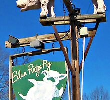 The Blue Ridge Pig by tanya breese