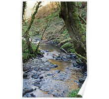 Tranquil Waters Flow, Enchanted Forest, Dun a Rí 2012 Poster